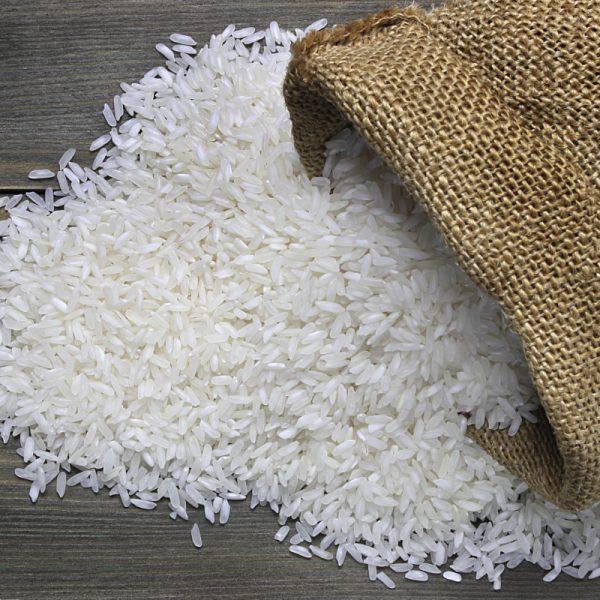 برنج کشت اول ارگانیک فریدونکنار